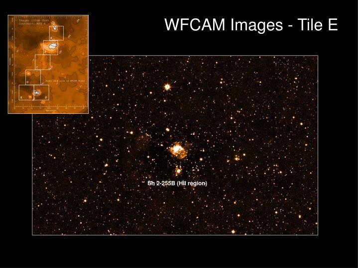 WFCAM Images - Tile E