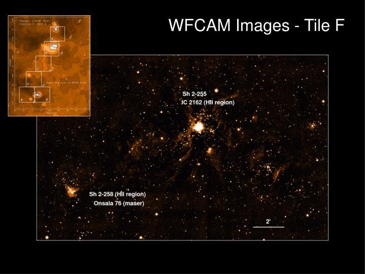 WFCAM Images - Tile F