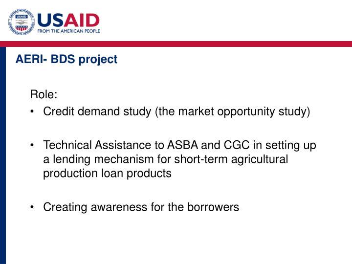 AERI- BDS project