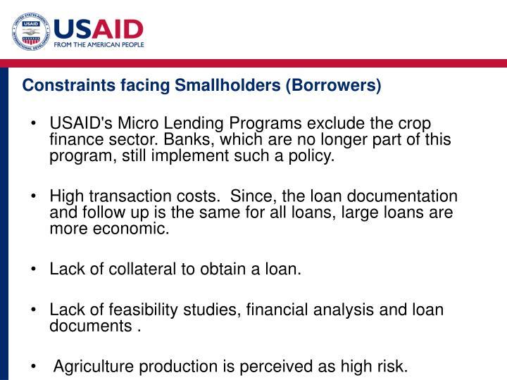 Constraints facing Smallholders (Borrowers)