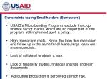 constraints facing smallholders borrowers