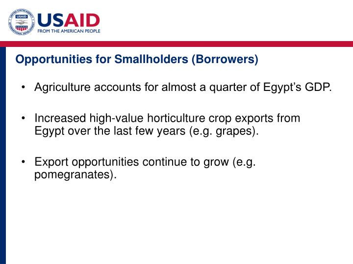 Opportunities for Smallholders (Borrowers)