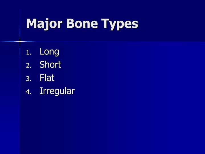 Major Bone Types
