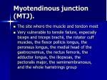 myotendinous junction mtj