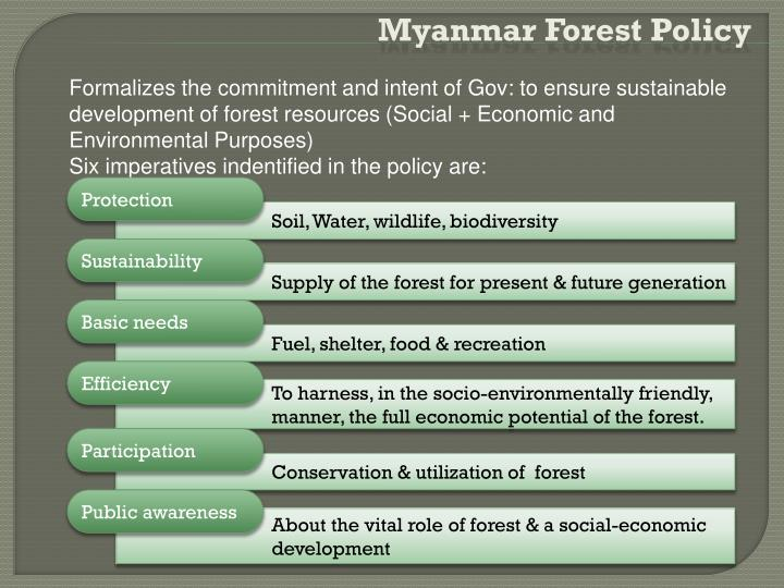 Myanmar Forest Policy