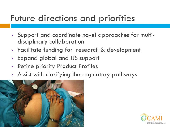 Future directions and priorities