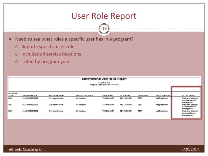 User Role Report