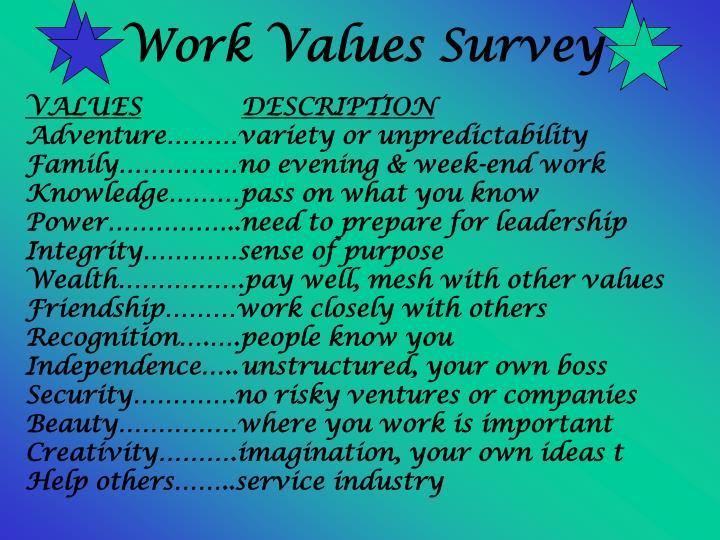 Work Values Survey
