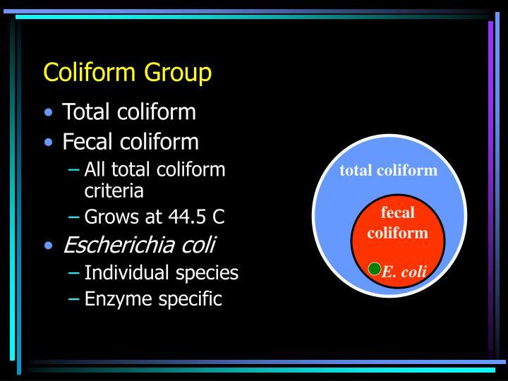 Coliform Group