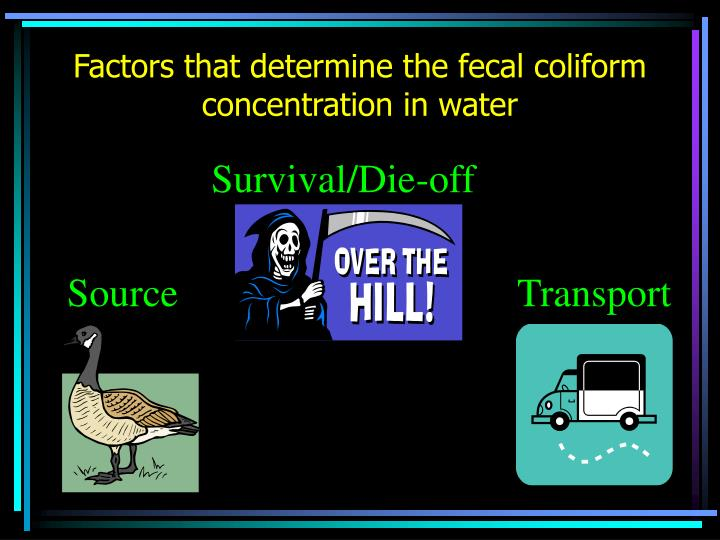 Factors that determine the fecal coliform concentration in water