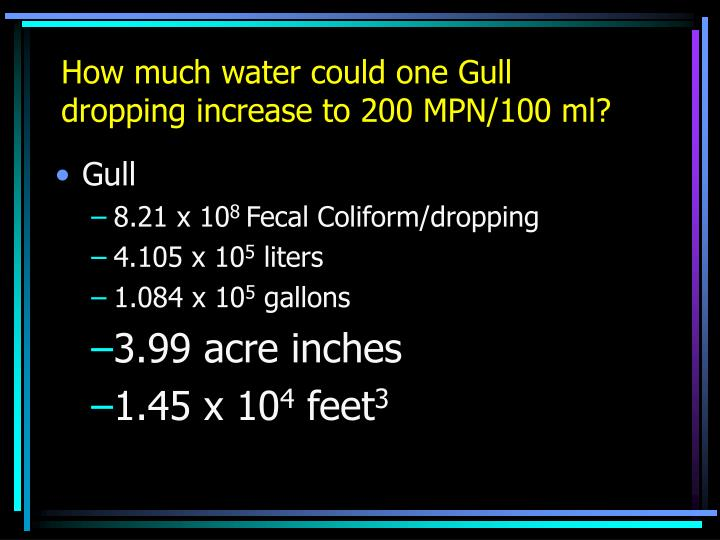 How much water could one Gull dropping increase to 200 MPN/100 ml?