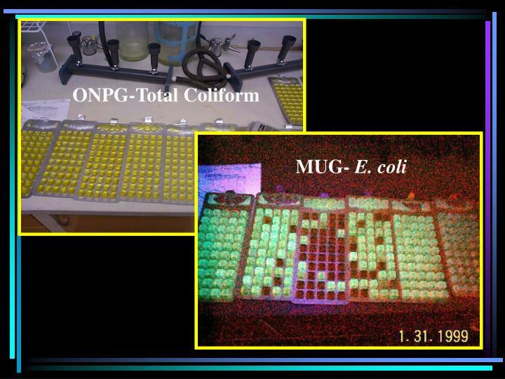 ONPG-Total Coliform