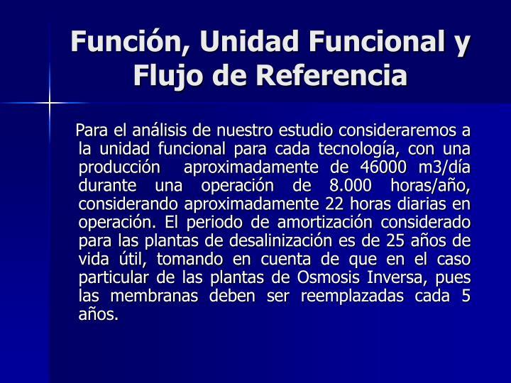 Función, Unidad Funcional y Flujo de Referencia