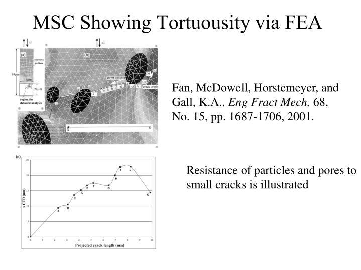 MSC Showing Tortuousity via FEA
