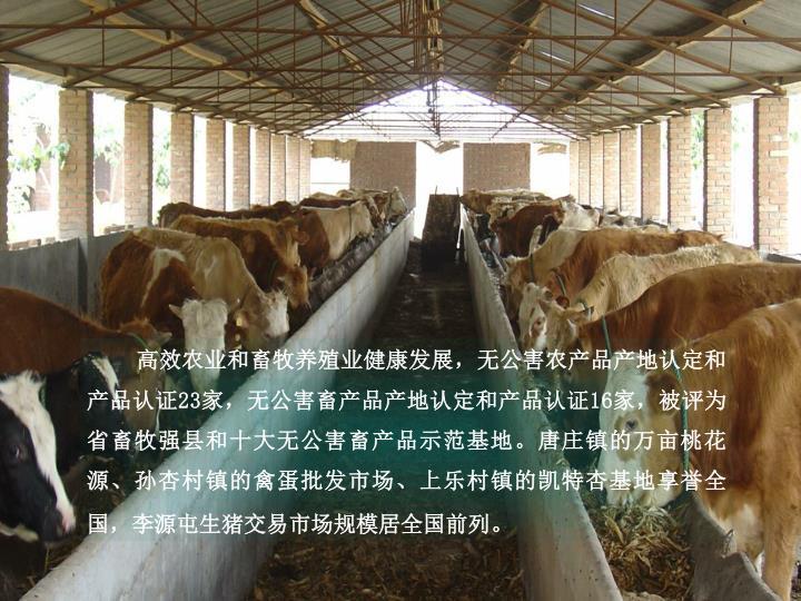 高效农业和畜牧养殖业健康发展,无公害农产品产地认定和
