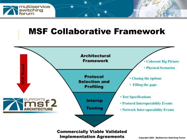MSF Brand