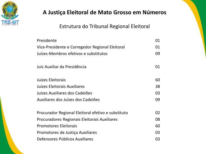 A Justiça Eleitoral de Mato Grosso em Números