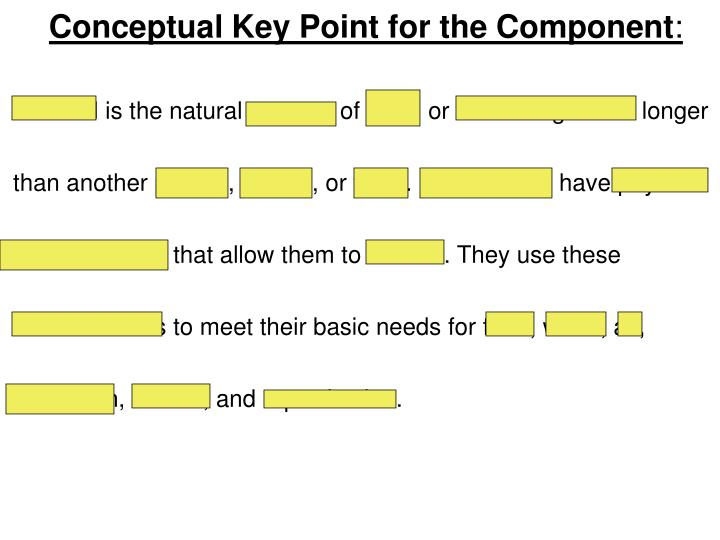 Conceptual Key Point for the Component