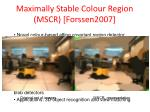 maximally stable colour region mscr forssen2007