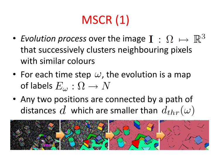 MSCR (1)