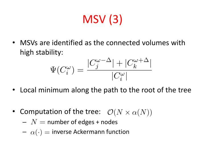 MSV (3)