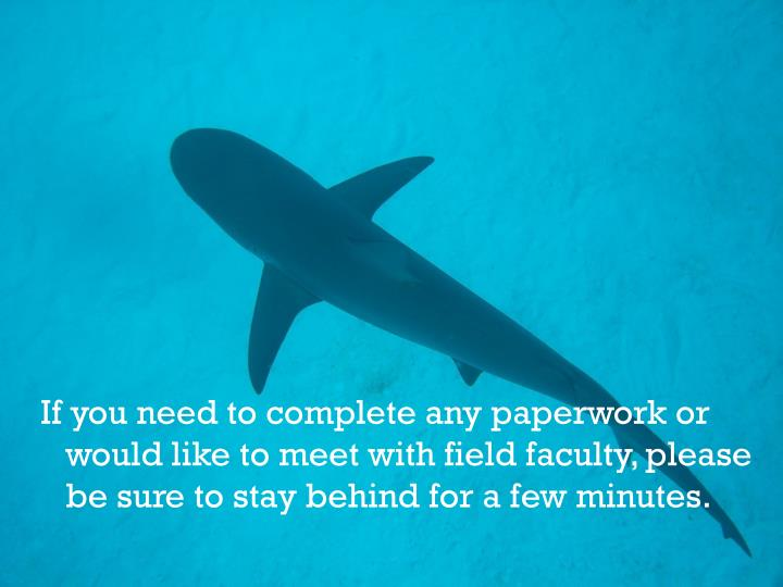 If you need to complete any paperwork or would like to meet with field faculty, please be sure to stay behind for a few minutes.