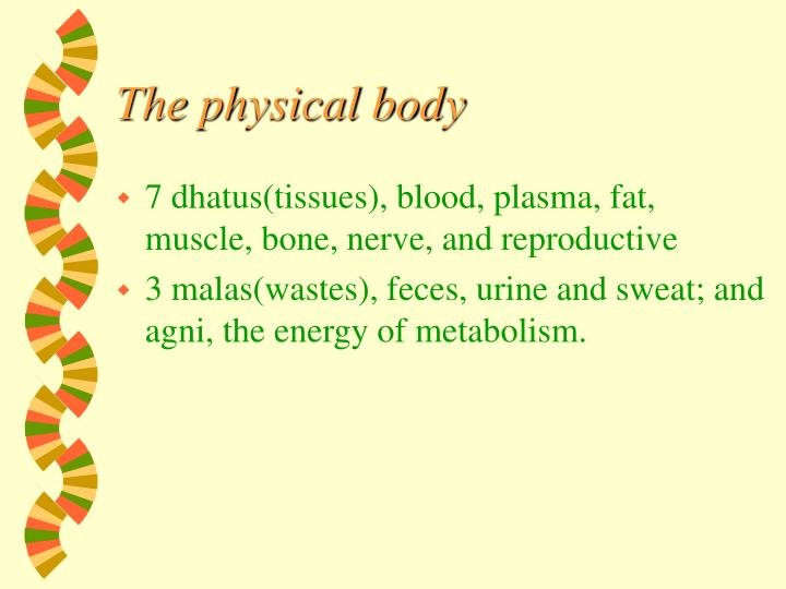 The physical body