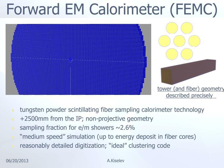 Forward EM Calorimeter (FEMC)