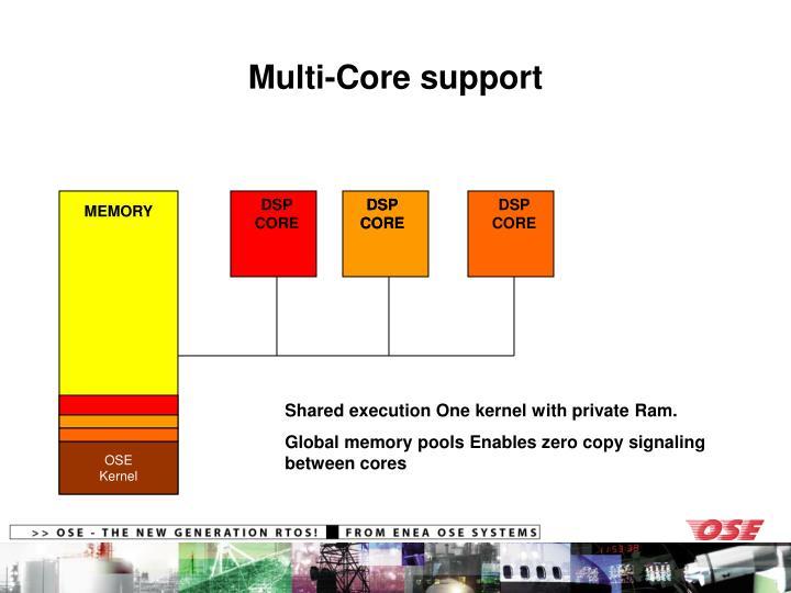 Multi-Core support