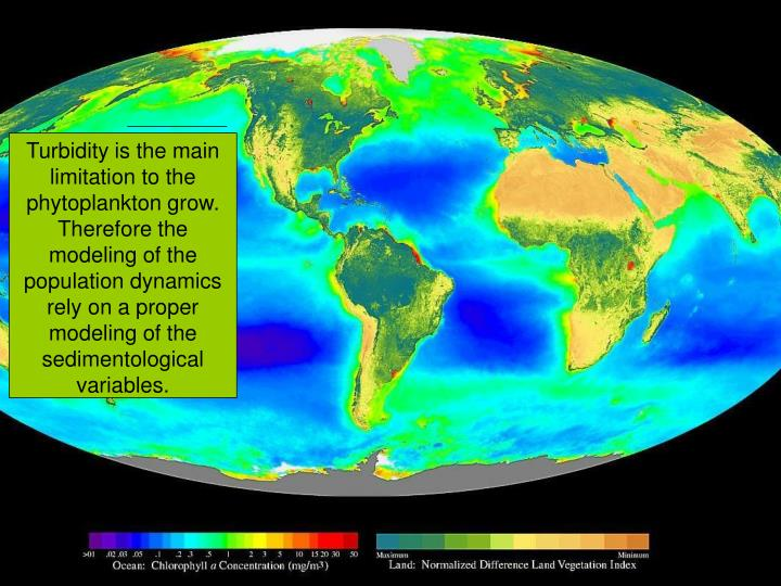 Turbidity is the main limitation to the phytoplankton grow. Therefore the modeling of the population dynamics rely on a proper modeling of the sedimentological variables.