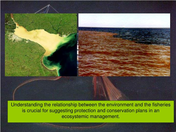 Understanding the relationship between the environment and the fisheries is crucial for suggesting protection and conservation plans in an ecosystemic management.
