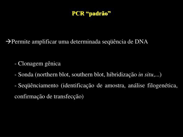 """PCR """"padrão"""""""