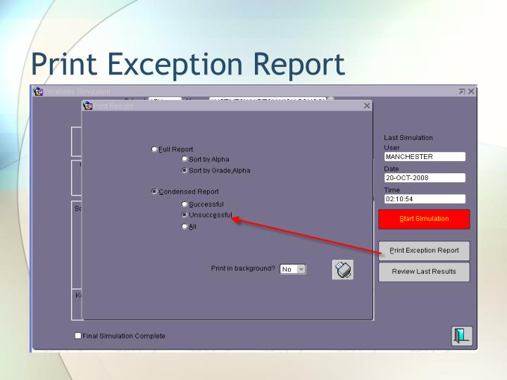 Print Exception Report