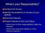 what s your responsibility