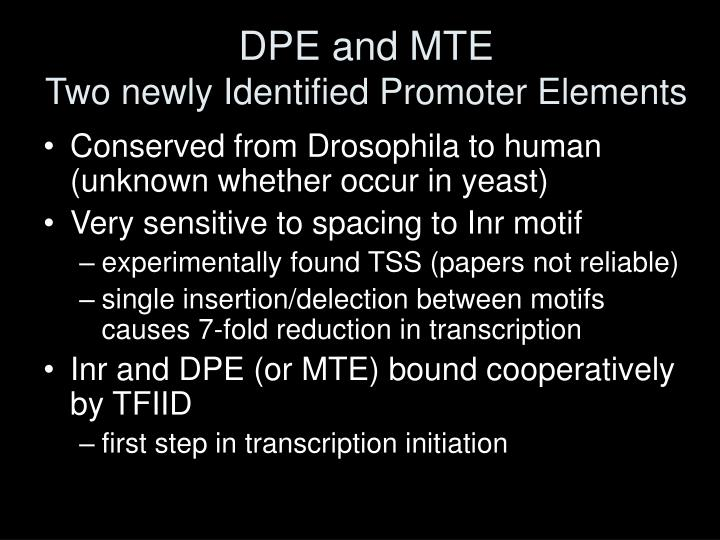 DPE and MTE