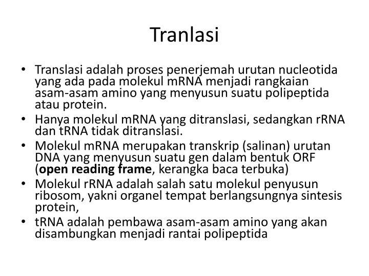 Tranlasi