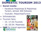 domestic tourism 2013