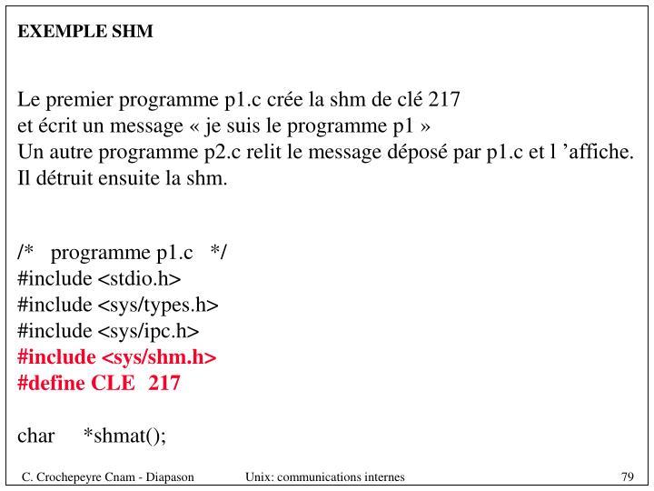 EXEMPLE SHM