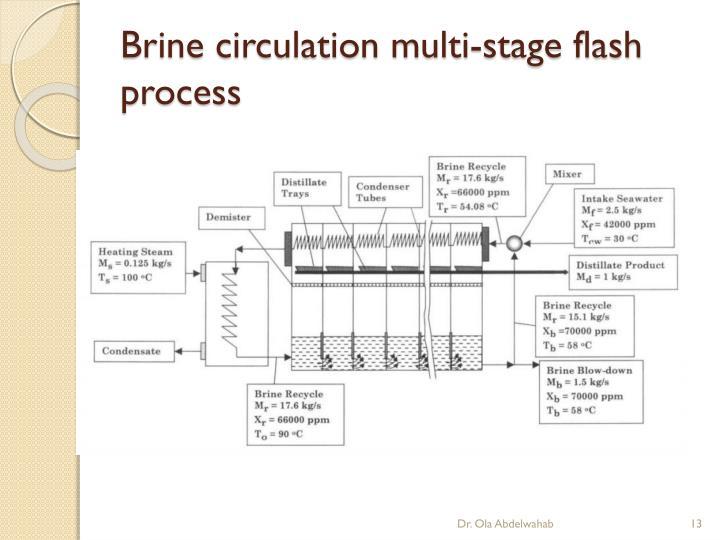 Brine circulation multi-stage flash process