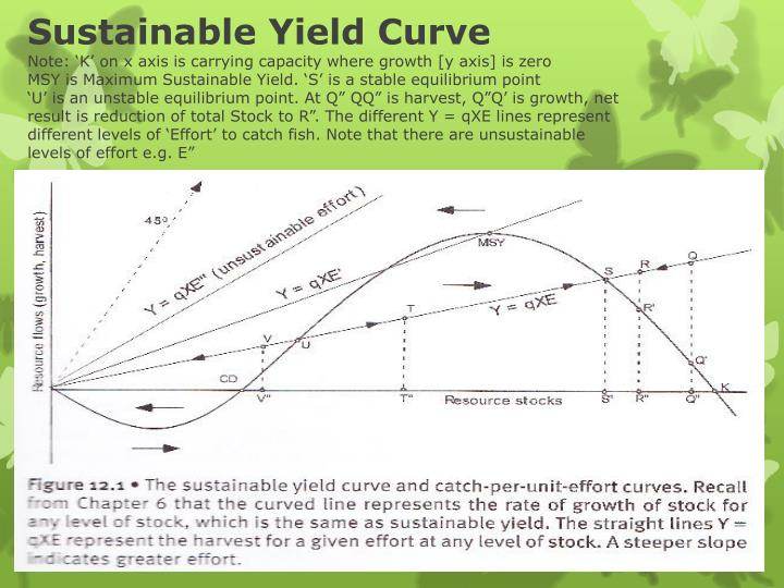 Sustainable Yield Curve
