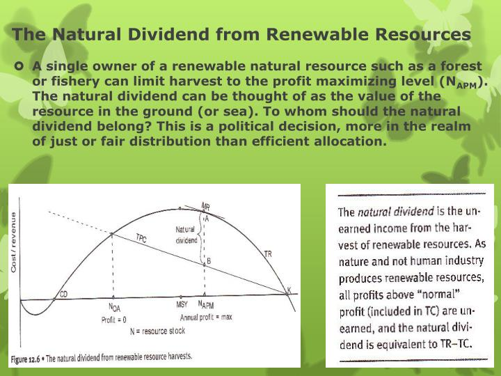 The Natural Dividend from Renewable Resources