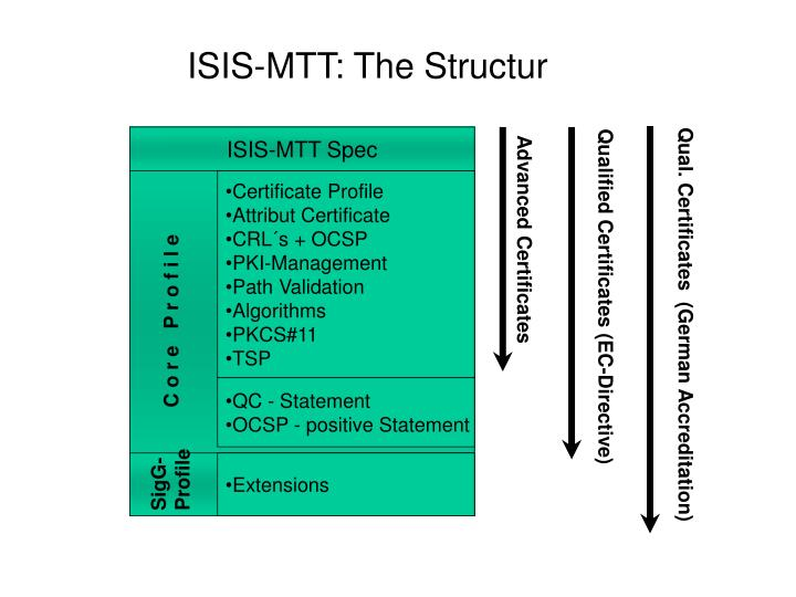ISIS-MTT: The Structur