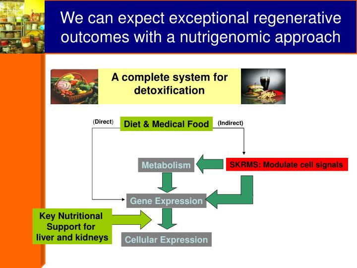 We can expect exceptional regenerative outcomes with a nutrigenomic approach