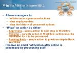 what is mss in empowhr