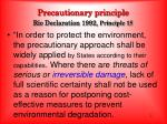 precautionary principle rio declaration 1992 principle 15