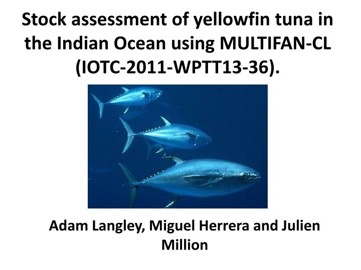 Stock assessment of yellowfin tuna in the Indian Ocean using MULTIFAN-CL (IOTC-2011-WPTT13-36).