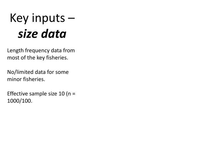 Key inputs –