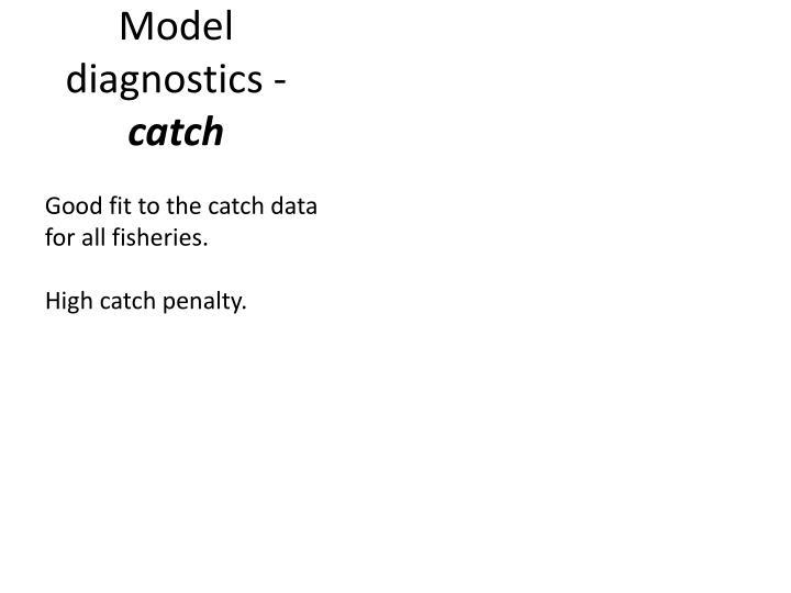 Model diagnostics -