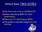 voters have two votes
