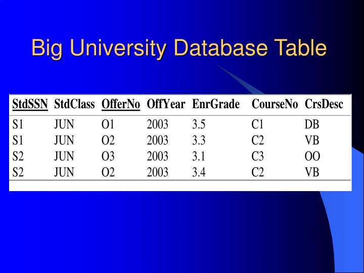 Big University Database Table